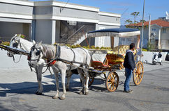 Horse carriage in Prince islands Royalty Free Stock Image