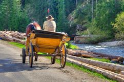Horse carriage ride. Stock Images