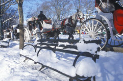 Horse carriage ride in Central Park, Manhattan, New York City, NY after winter snowstorm Royalty Free Stock Image