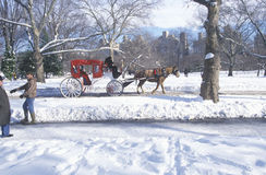 Horse carriage ride in Central Park, Manhattan, New York City, NY after winter snowstorm Stock Photography
