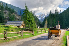 Horse carriage ride in mountains. Stock Photos