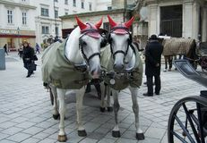 Horse carriage ride in Vienna Royalty Free Stock Image