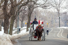 Horse carriage rider in Central Park Stock Image