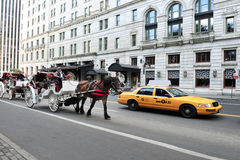 Horse and Carriage Rides in Central Park Stock Photo