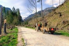 Horse and carriage rides. Horse and carriage rides in Koscieliska Valley in Tatra Mountains, Poland Stock Photos