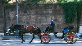 Horse and Carriage, Rome. A horse and carriage looking for trade amongst the tourists in Rome, Italy Stock Photos