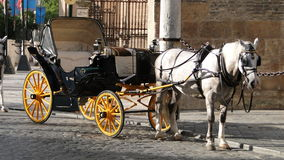 Horse carriage in Sevilla, Spain Royalty Free Stock Images