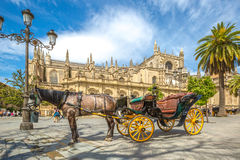 Horse carriage in Seville. Seville, Andalusia, Spain - April 18, 2016: typical old carriage drawn by a white horse stopped in front of Cathedral of Seville Stock Photography