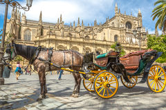 Horse carriage in Seville Cathedral. Seville, Andalusia, Spain - April 18, 2016: typical old carriage drawn by a white horse stopped in front of Cathedral of Stock Photos