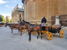 Horse and carriage in Seville Stock Image