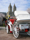 Horse carriage, skyscraper, Central Park, New York. A horse carriage at Central Park, in the heart of New York City, with a skyscraper in upper west side behind royalty free stock image
