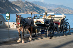 Horse carriage is staying in port of Paleochora town, Crete island, Greece Stock Photo