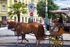 Horse carriage on a street in Karlovy Vary Stock Photo
