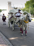 Horse carriage on the street in the modern city Royalty Free Stock Photography
