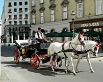 Horse and carriage on the streets of Vienna Stock Photo