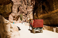 Horse carriage, tourist transport in Siq, narrow slot-canyon that serves as entrance passage to hidden city Petra, Jordan. Time ma Royalty Free Stock Photos