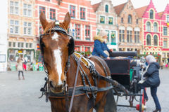 Horse carriage on Markt square of Bruges. Bruges, Belgium - December 26, 2014: Horse carriage and tourists on Grote Markt square of Brugge Christmas. Belgian Royalty Free Stock Photography