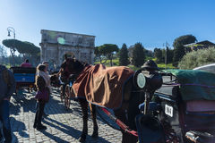 Horse carriage for tourists in Rome, Italy Royalty Free Stock Photos
