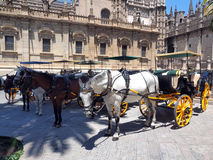 Horse carriage Royalty Free Stock Photos