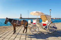 Horse carriage for transporting tourists in old port of Chania Stock Photography