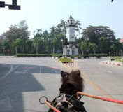 Horse carriage. Carriage, Horse, travel, on the road, traffic circle, lampang thailand ,  drag Royalty Free Stock Photo
