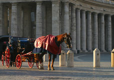 Horse and Carriage at Vatican Square. A horse and carriage stand in the early morning sun at Vatican Square in Rome, Italy.  Space for your copy Royalty Free Stock Photos