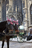 Horse Carriage in Vienna Royalty Free Stock Photography