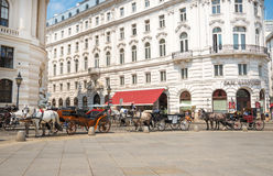 Horse carriage in Vienna - Austria Stock Photo