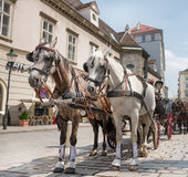 Horse carriage in Vienna - Austria Stock Images