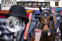 Horse carriage in Vienna, Austria with bowler on light Royalty Free Stock Images