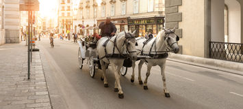 Horse carriage in Vienna - Austria Royalty Free Stock Photos