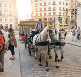 Horse carriage in Vienna - Austria Stock Photos