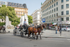 Horse carriage in Vienna - Austria Royalty Free Stock Photo