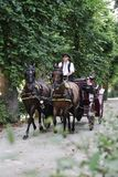 Horse carriage Vienna royalty free stock images