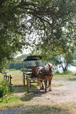 Horse with carriage in village Royalty Free Stock Photography