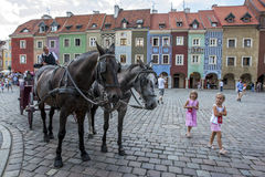 A horse and carriage wait for customers to ride around the colourful streets of Poznan in Poland. Royalty Free Stock Images