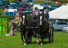 Horse and Carriage at Westmorland show Stock Image