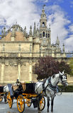 Horse carriages and the Cathedral of Seville Stock Images