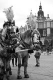 Horse carriages in Cracow, Poland Royalty Free Stock Photo