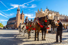 Horse carriages at main square in Krakow Royalty Free Stock Photography