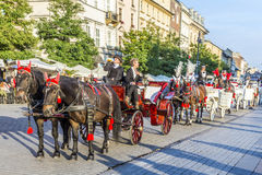 Horse and carriages at the Main Square in Krakow Royalty Free Stock Image