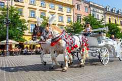 Horse carriages at main square in Krakow in a summer day, Poland Stock Images