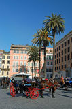 Horse carriages in rome Stock Image