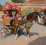 Horse carriages for tourist services. In Lampang Thailand Stock Image