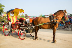 Horse carriages for tourist services in  Thailand Royalty Free Stock Photography