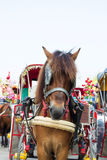 Horse carriages for tourist services in  Thailand Royalty Free Stock Image
