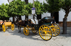 Horse carriages on the tourist street of Seville, Andalusia, Spa. Crews, drawn by horses waiting for tourists in the tourist heart of Seville - next to the Royalty Free Stock Images