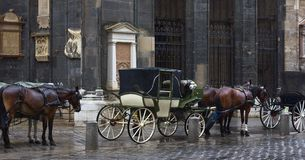 Horse Carriages Vienna Royalty Free Stock Image