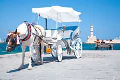 Horse carrige in Chania's venetian harbour royalty free stock image