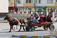 Horse and carrige Royalty Free Stock Photo